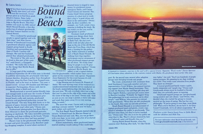 Greyhounds Sandlapper Magazine Beach Bound Hounds