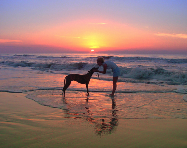 Greyhound Crossroads photography beach best
