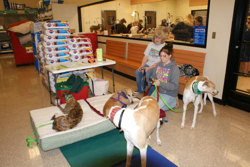 Best 28 pet stores in concord nc hott dogs provides for Mcdonalds norwich ny