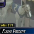 Flying Prudent3.png