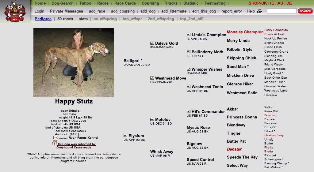 Pedigree Database Dog Names