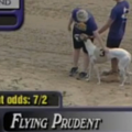 FlyingPrudent2.png